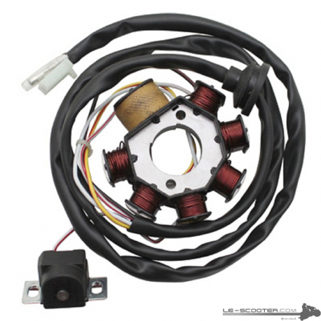 STATOR P2R POUR BOOSTER/STUNT/NG >2003