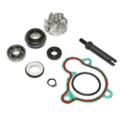 KIT REPARATION POMPE A EAU MAXISCOOTER
